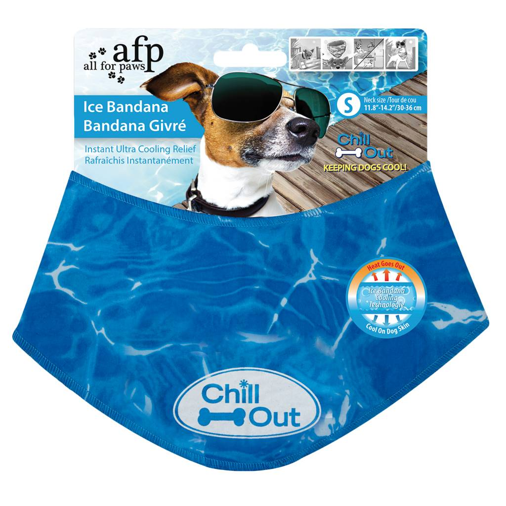 All for paws All for Paws (AFP) Chill out - Bandana
