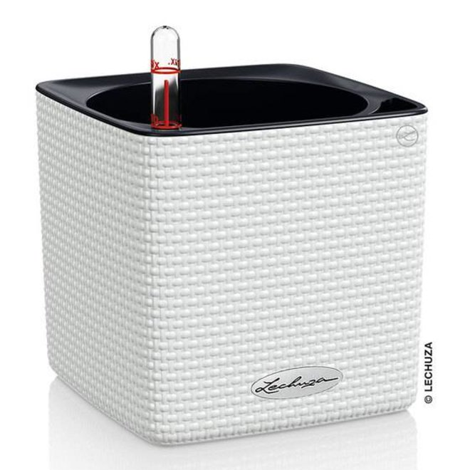 Lechuza cube with unique watering system