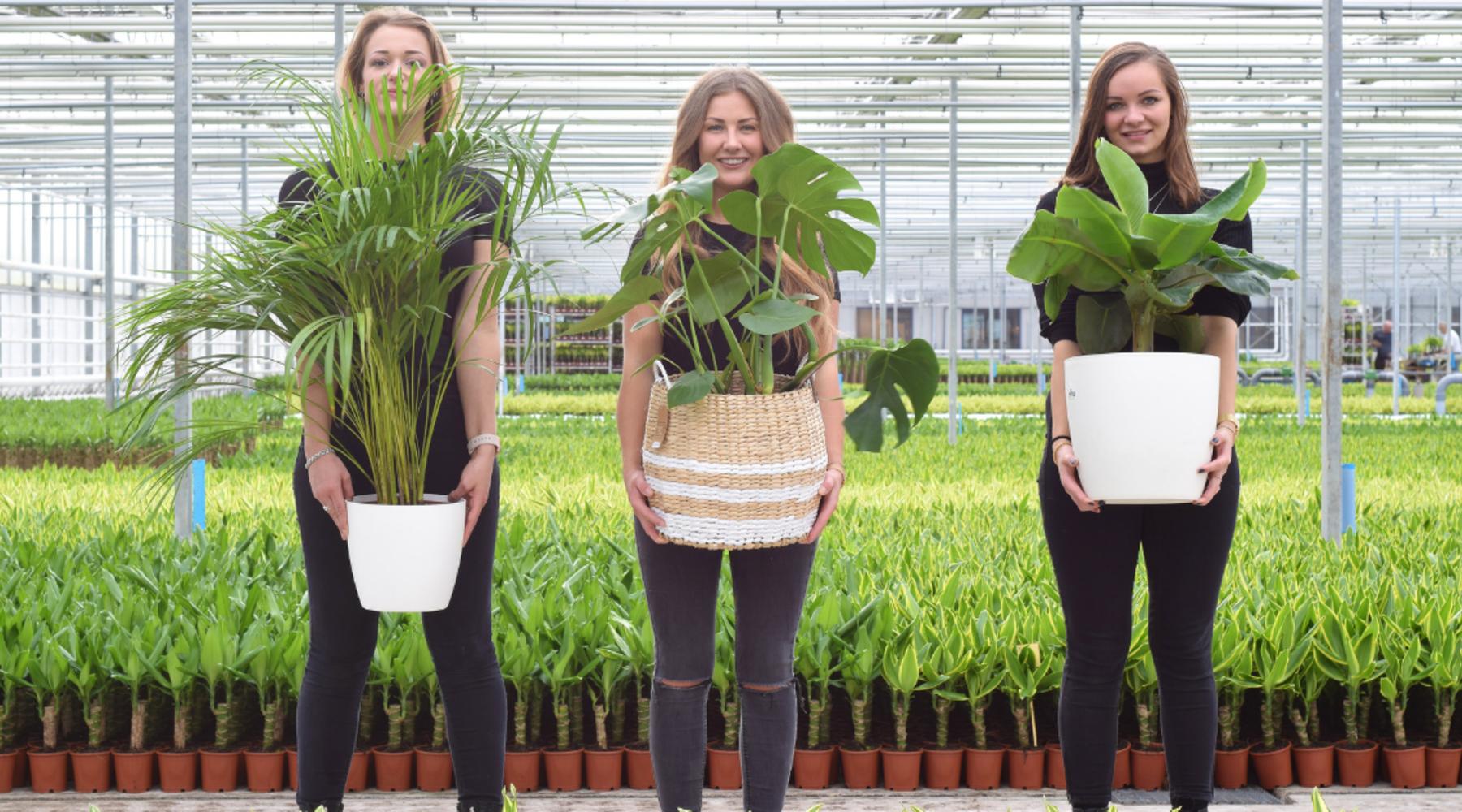 Plantenmeisjes met een missie!