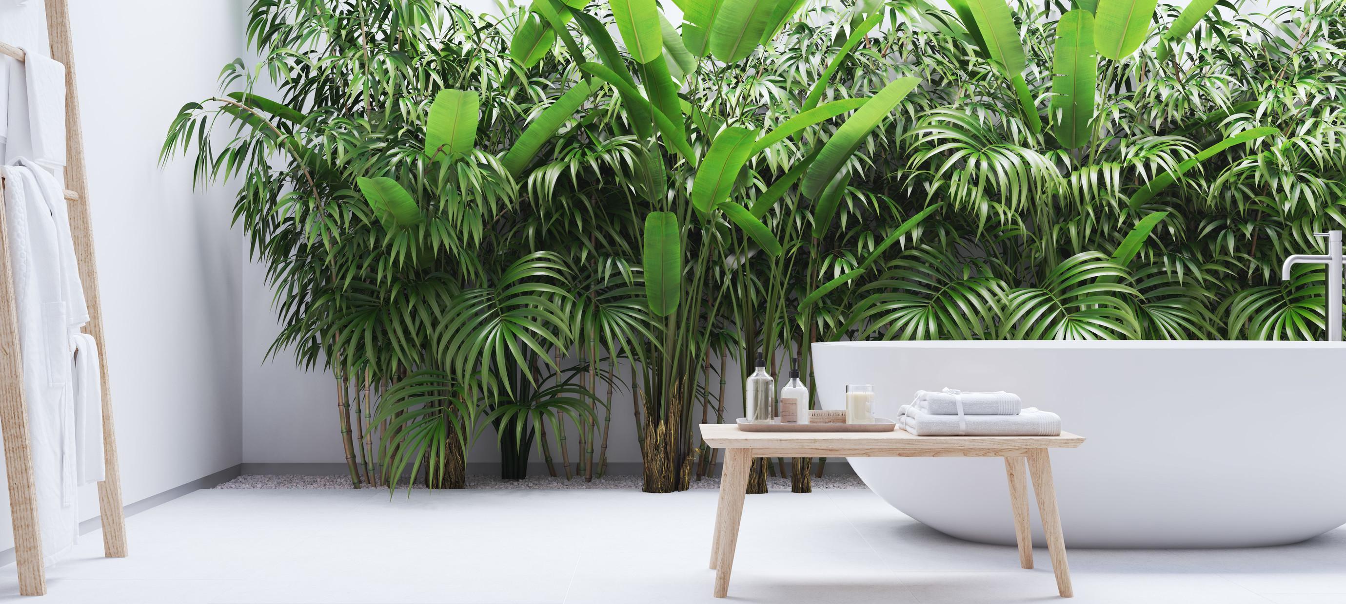 Creëer een botanische spa-oase in je badkamer met planten