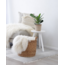 Green Bubble Ficus Audrey in naturel mand