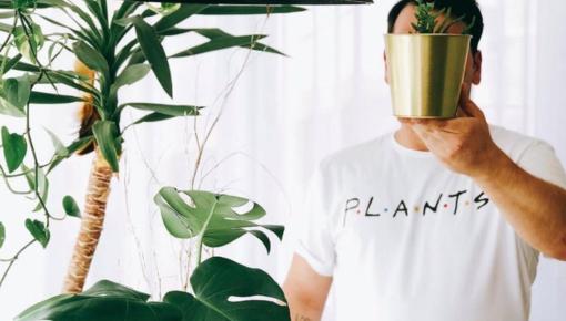 Bullet-proof plants