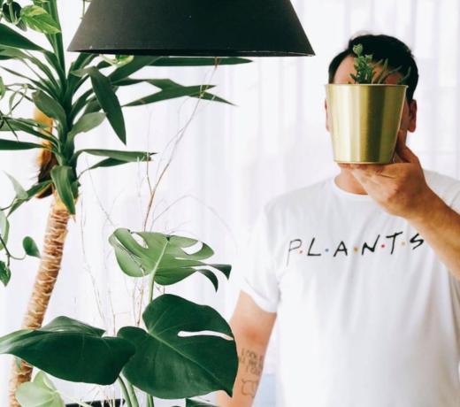 Hufterproof planten