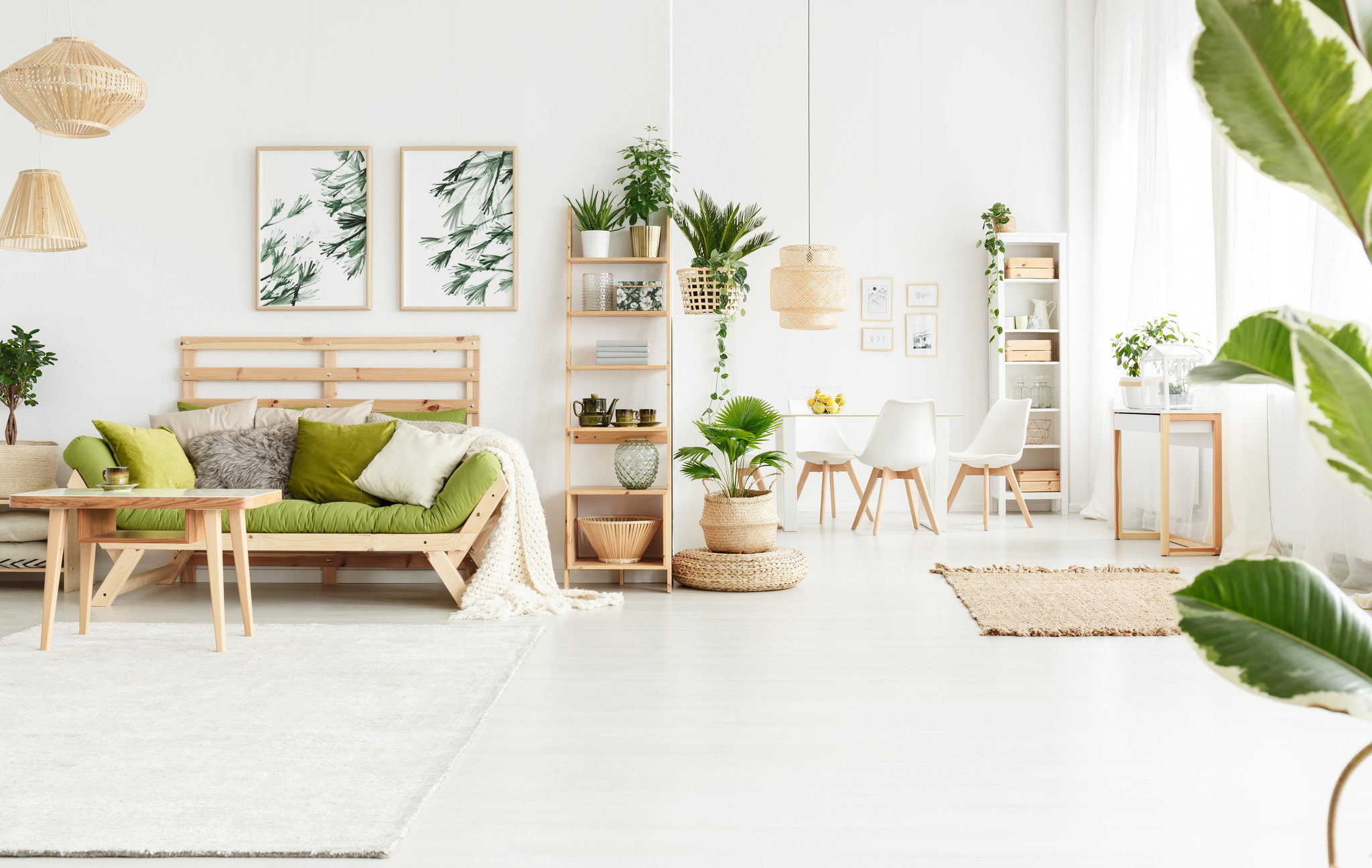 5x Leuke cadeautjes voor planten-liefhebbers