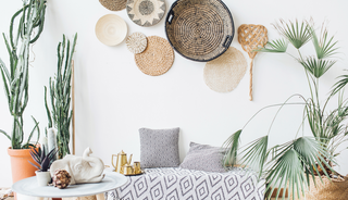 Plants for a bohemian interior