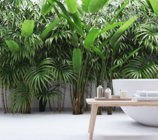 Tropical houseplants