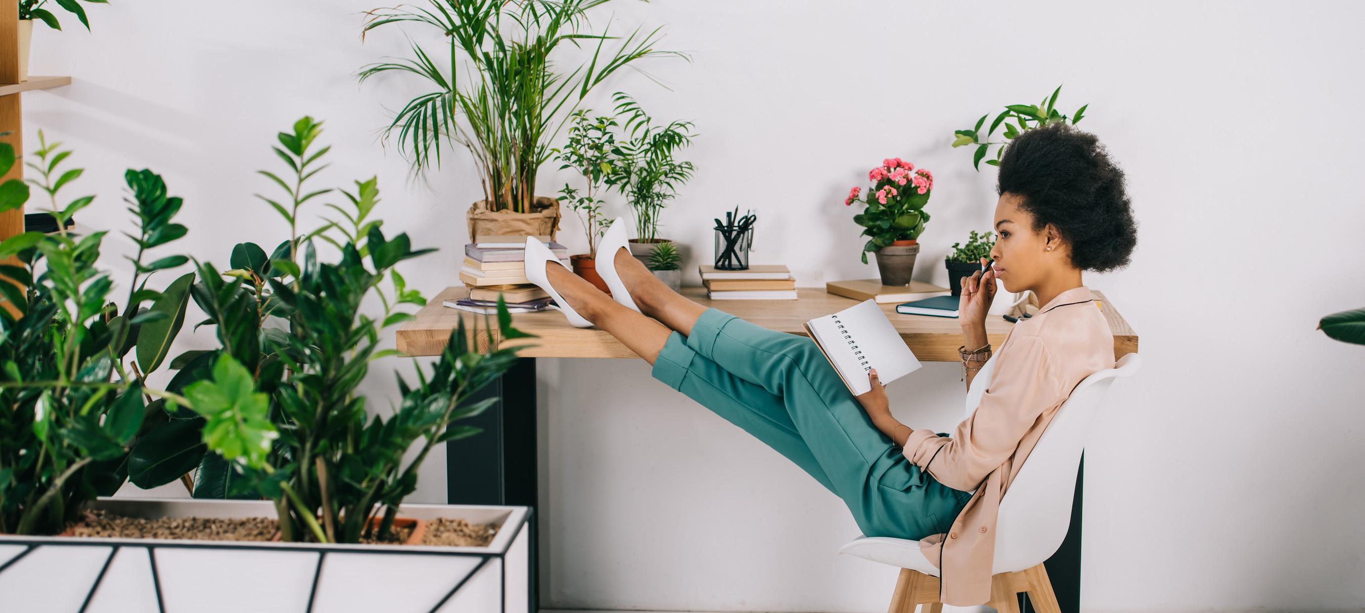 Stres? Deze planten helpen je met ontspannen