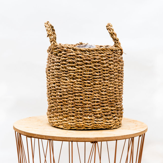 Green Bubble Basket Jack