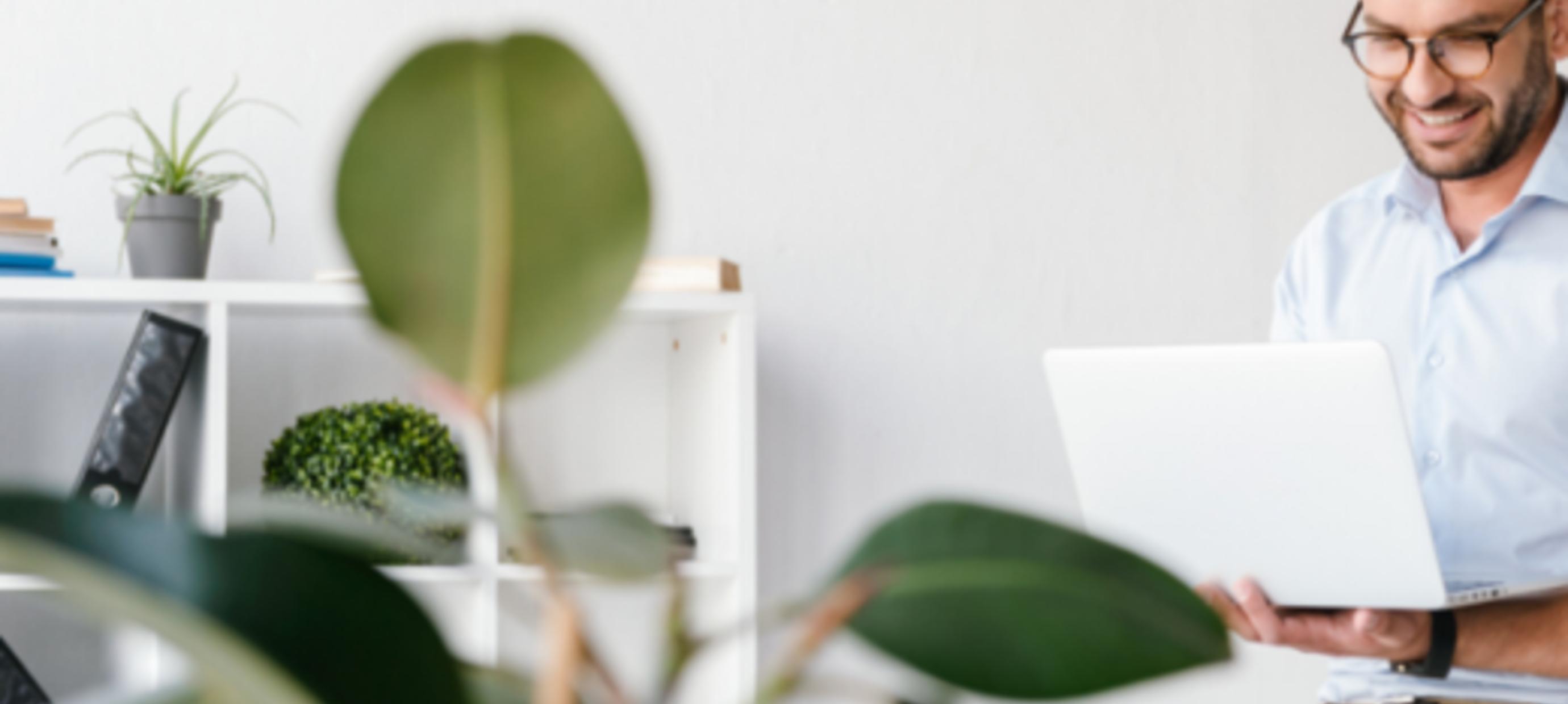Planten voor op jouw thuiskantoor