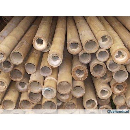 Bamboepaal
