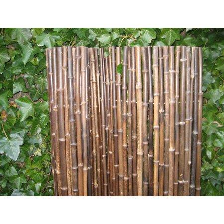 Bamboe rolscherm Black   30mm