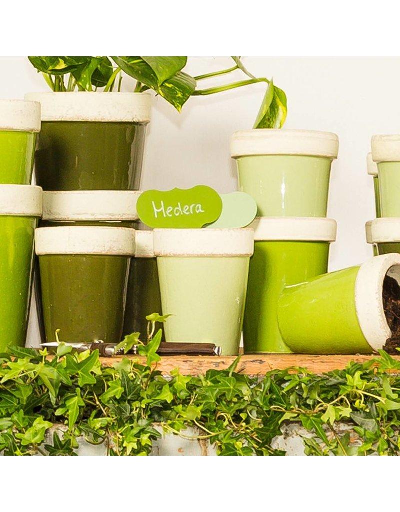 Esschert Design Plantenstekers met watervaste stift  - set/6 - Groentinten