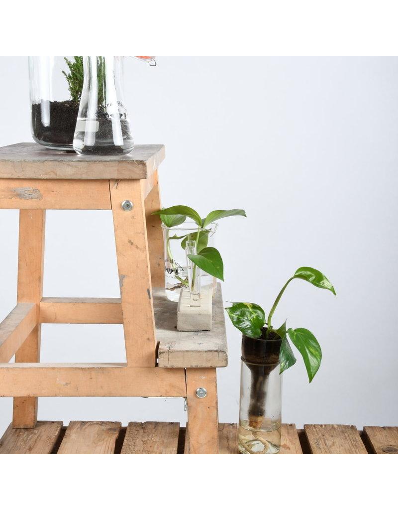 Esschert Design Fles bloempot met water reservoir
