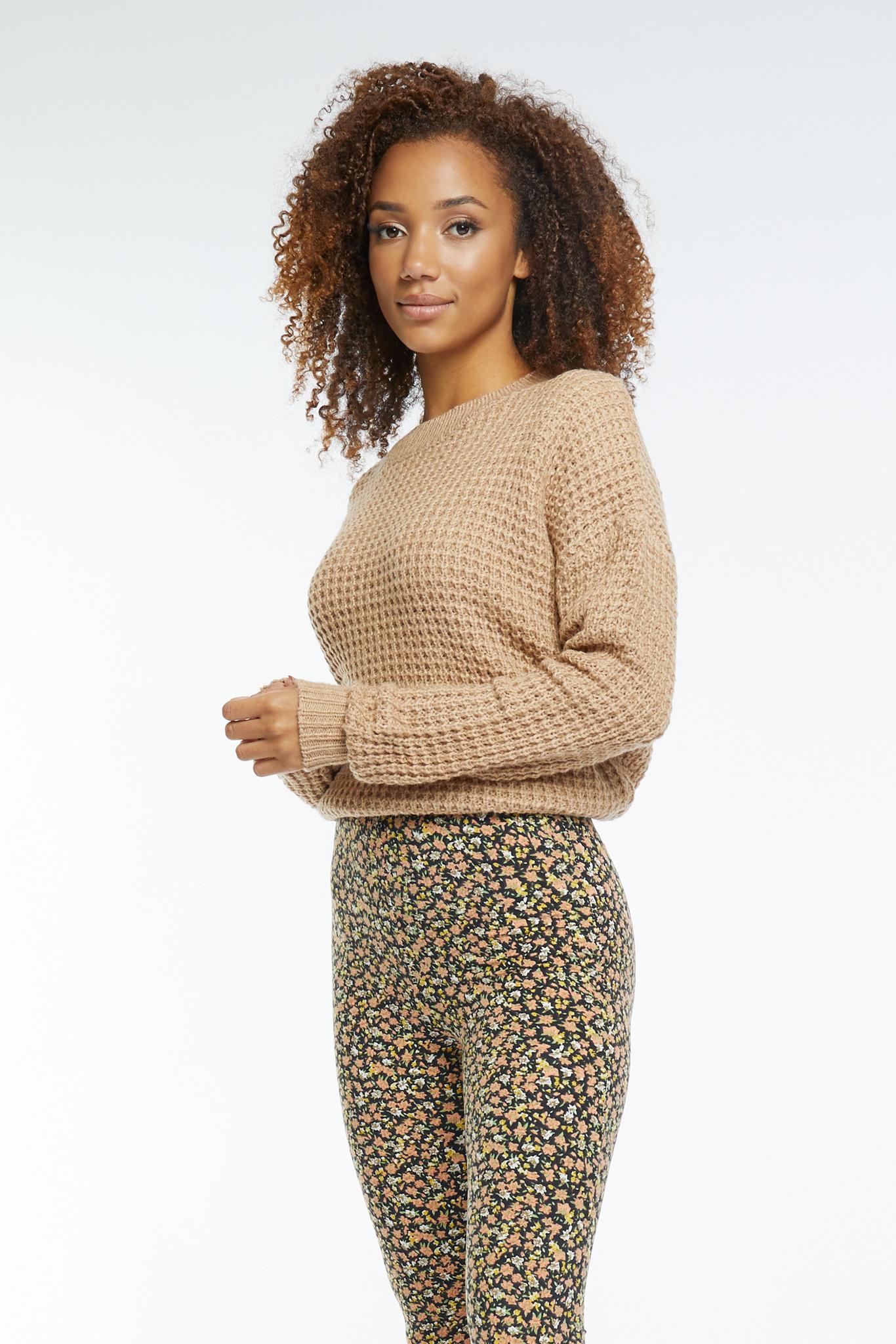 Lofty Manner Beige Sweater Shauna