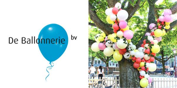 Ballon Decorateur De Ballonnerie