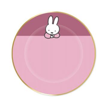 Haza Nijntje Baby Roze Bordjes - 8 stuks