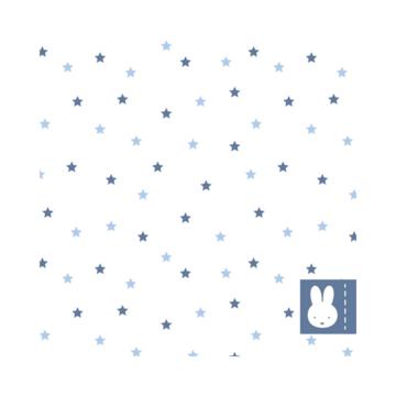 Haza Nijntje Baby Blauw Servetjes - 20 stuks
