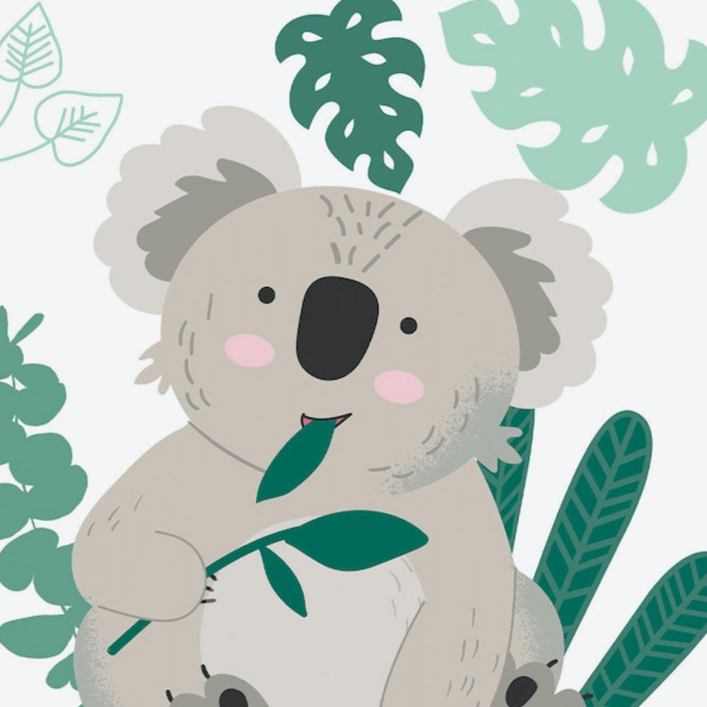 Koala (Wild Life)