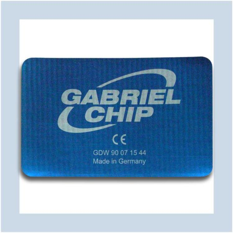 Gabriel Technologie Chip (water) pipes GDW90