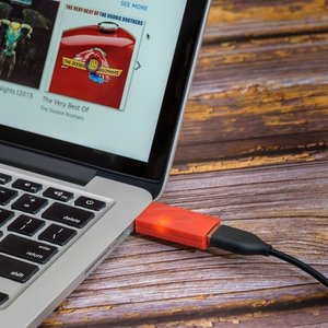 iFi audio iDefender+ USB-A zu USB-A