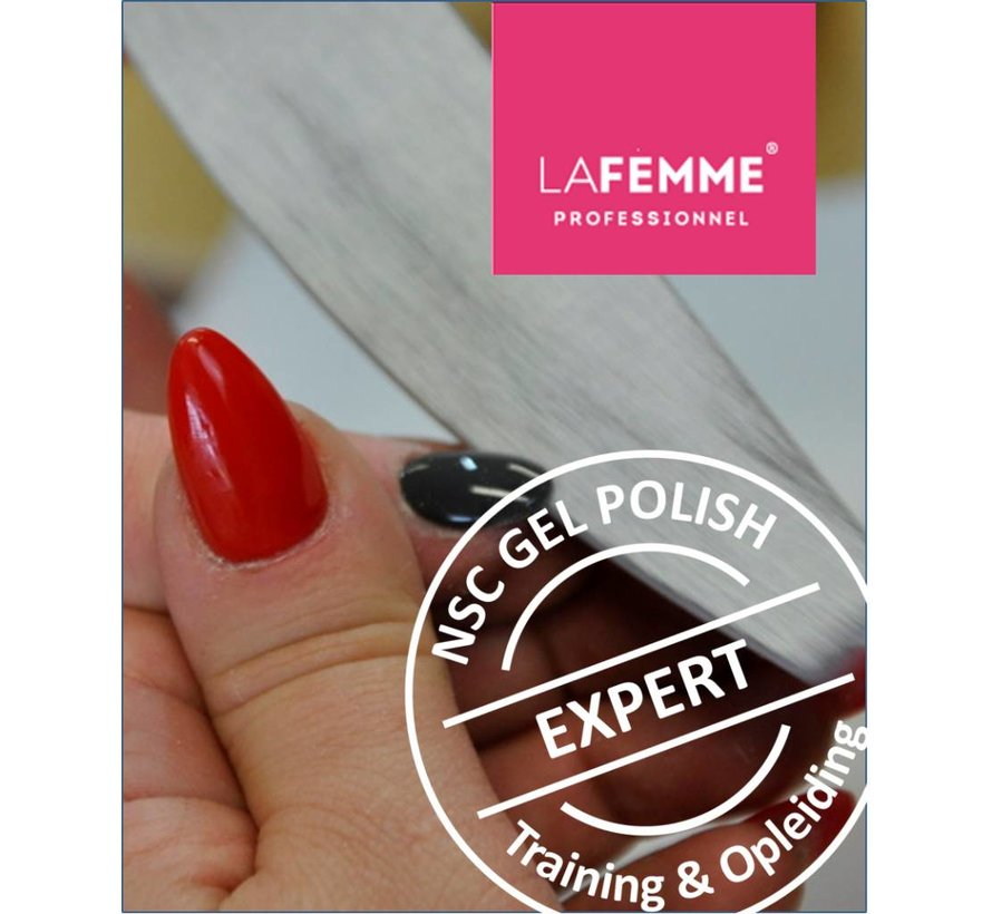 Training NSC Gel Polish incl. Salonset