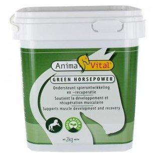ANIMAVITAL HORSES GREEN HORSEPOWER (2 KG)