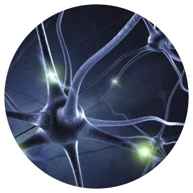 Welke voedingssupplementen kunnen helpen bij zenuwpijn en rugpijn?