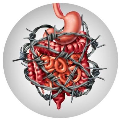 L-Glutamine effectief bij postinfectieuze Prikkelbare Darm Syndroom (PDS)