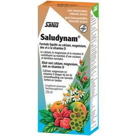 SALUS HAUS SALUDYNAM FORMULE LIQUIDE AU CALCIUM, MAGNÉSIUM, ZINC ET À LA VITAMINE D (250 ML)