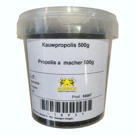 BIJENHOF BEE PRODUCTS PROPOLIS PUUR OM TE KAUWEN - KAUWPROPOLIS (500 G)