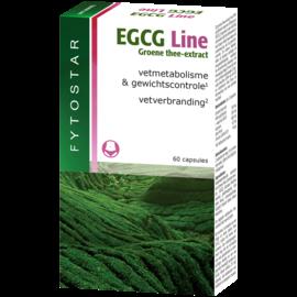 FYTOSTAR  EGCG LINE GROENE THEE EXTRACT (60 CAPSULES)