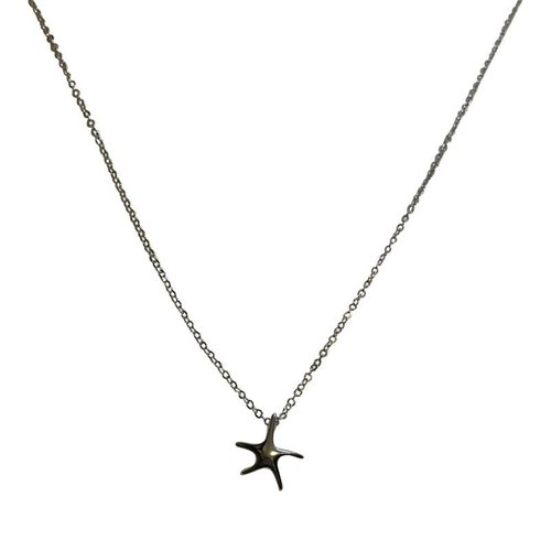 Zeester ketting 925 sterling silver