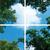 Fotoprint afbeelding Wolken en Bos 120x120cm voor 4x 60x60cm led paneel