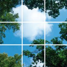 Fotoprint afbeelding Wolken en Bos 180x180cm voor 9x 60x60cm led paneel