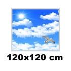 Led Paneel 120x120cm