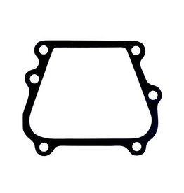 RecMar Johnson Evinrude Powerhead transfer port gasket (307133)