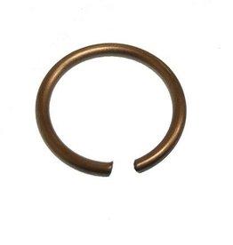 RecMar Parsun / Yamaha spring, plate (PAF4-04130007)