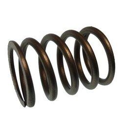 Parsun spring, valve (PAF6-04050003)
