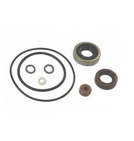 Gearcase Seal Kit 35 PK 70-73, 55 PK 78-82, 60 PK +84 (GLM87800)