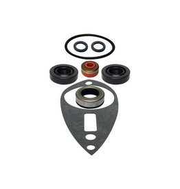 RecMar Gearcase Seal Kit 9,9/15 HP (GLM87804)