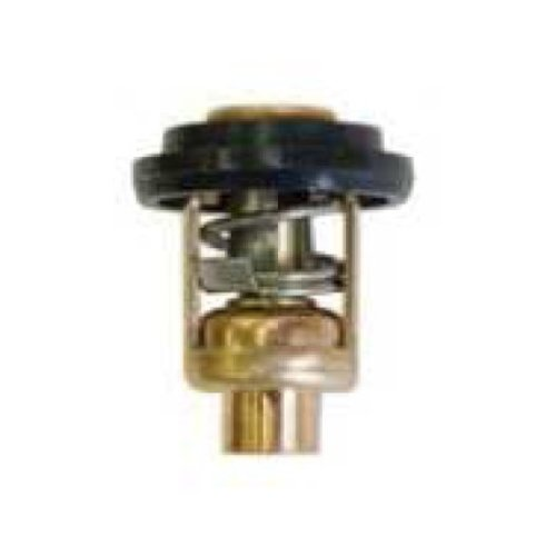 Force Thermostat