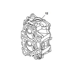 RecMar Yamaha / Parsun  CYLINDER HEAD ASSY F15 / F20 07+  6AH-11111-00
