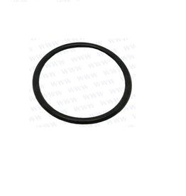 RecMar Parsun F40 O-RING (PAF25-01000005L)