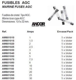 Zekeringen type AGS 6,4 x 32 mm 5 stuks