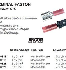 TERMINAL FASTON knijp stekkertjes p.pack