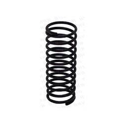 RecMar Parsun F40 SPRING (PAT40-10020004)