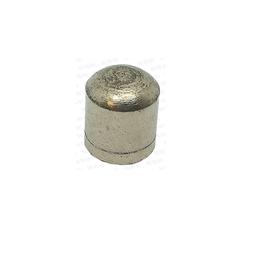 RecMar Parsun F50 & F60 PLUNGER, SHIFT CAM (PAT20-03000006)