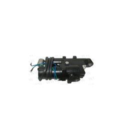 RecMar Parsun Hydraulic Tilt Assy F50, F60 hp (PAF60-06000000, 6C5-43800-12)