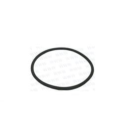 RecMar Parsun O Ring 45.5x2 F50, F60 hp (PAJISFG46)