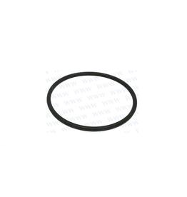RecMar Parsun O Ring 64x3.1 F50, F60 hp (PAJASOF40431-065)